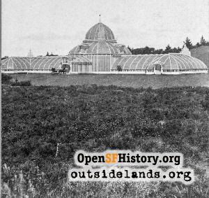 Conservatory of Flowers,1880