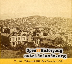 View NE From Nob Hill,1880