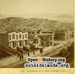 View From Nob Hill,1880