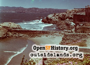 Point Lobos,1950