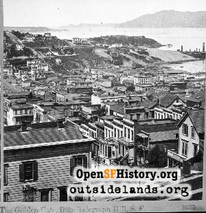 View W from Telegraph Hill,1870s