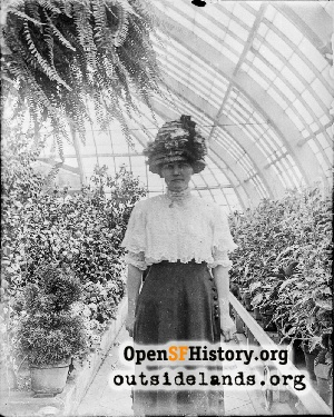 Conservatory of Flowers,1910