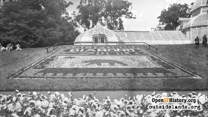 Conservatory floral arrangement for California Diamond Jubilee, 1925.