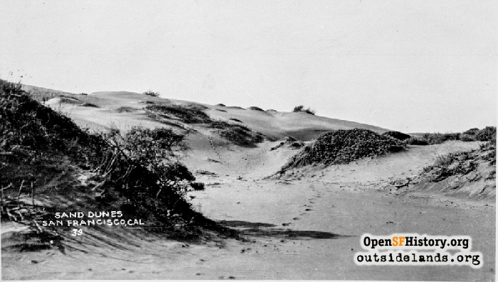 Search Results For San Francisco Ocean Beach Opensf History